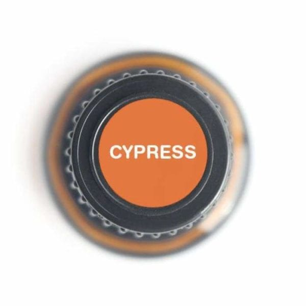 Cypress Pure Essential Oil - 15ml 1