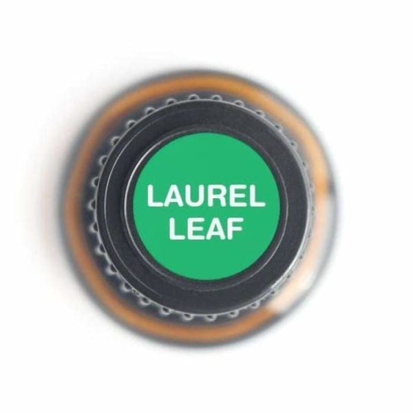 Laurel Leaf Essential Oil - 100% Pure 15ml 2